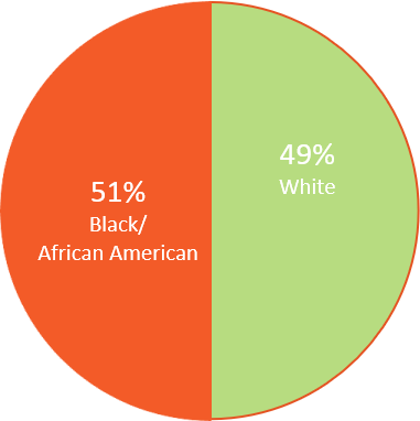 home connection ethnicity pie chart